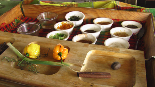 Seasonings used at the Spice Making Hut at Walkerswood, St. Ann, Jamaica.